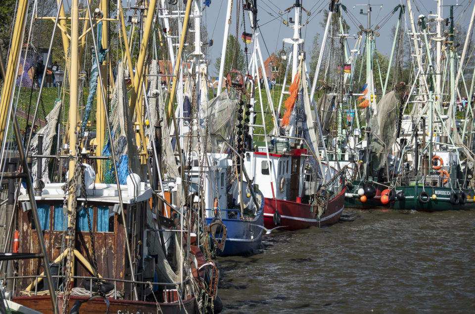 Fisherman's Wharf Impressions